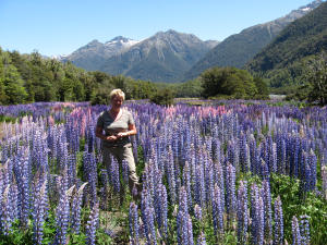 021-lucie-tussen-lupines